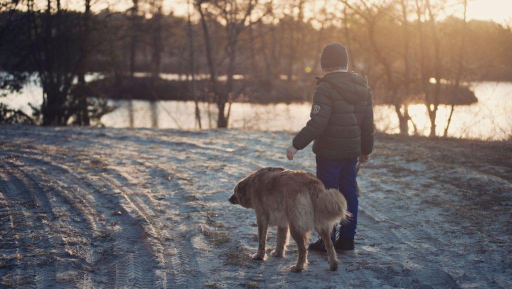 hund og barn i sneVuffeli hundeblog