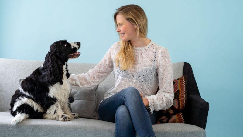 hund og ejer kigger på hinandenVuffeli hundeblog