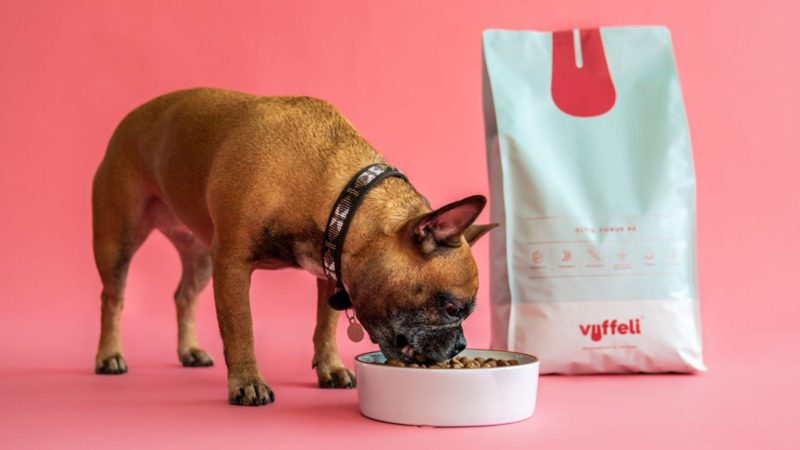hund spiser af skål vuffeli foderVuffeli hundeblog