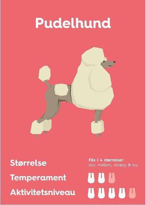 puddelhundVuffeli hundeblog