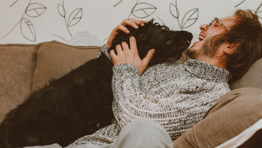 ejer ligger med hund på sofaen og legerVuffeli hundeblog