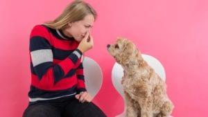 Hund og ejer: man skal holde øje med hundens afføring