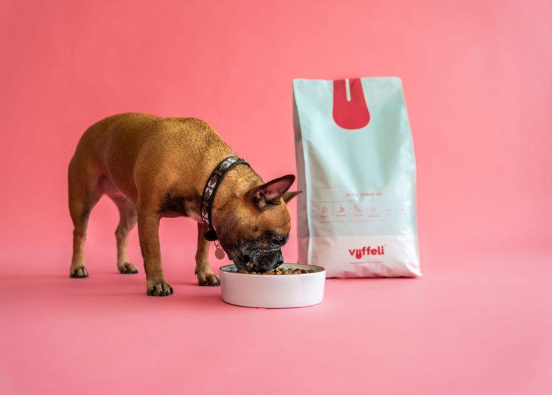 fransk bulldog spiser af hundeskålenVuffeli hundeblog