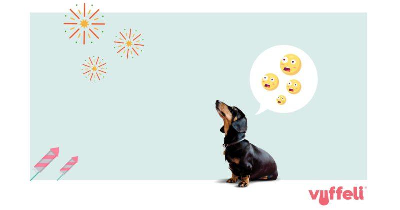 hund er bange for fyrværkeriVuffeli hundeblog