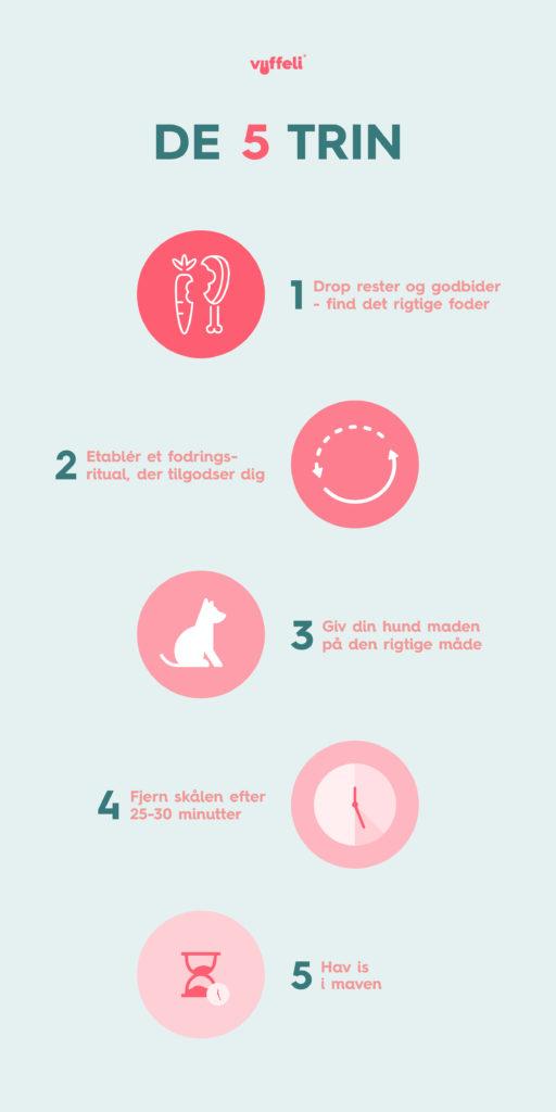 5 trin til dig med en kræsen hund